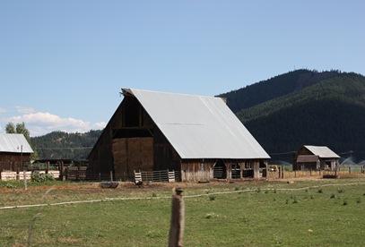 2011-08-09_088