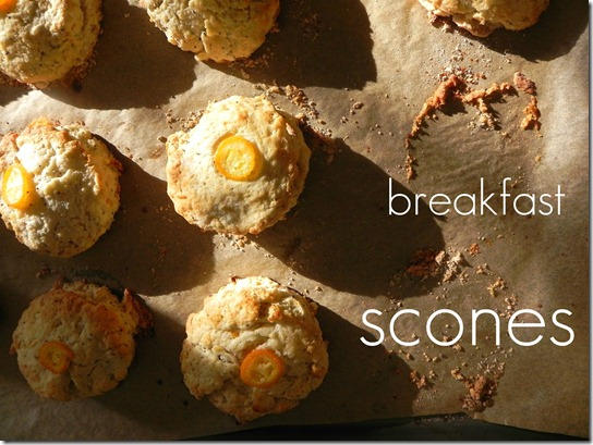 kumquat-poppyseet-scones-2