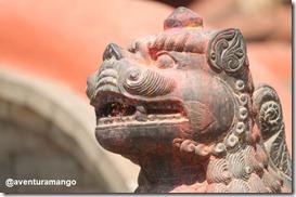 Leão em Kathmandu