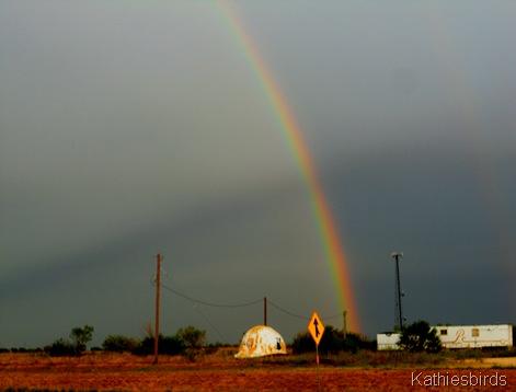 13. TX Rainbow-kab