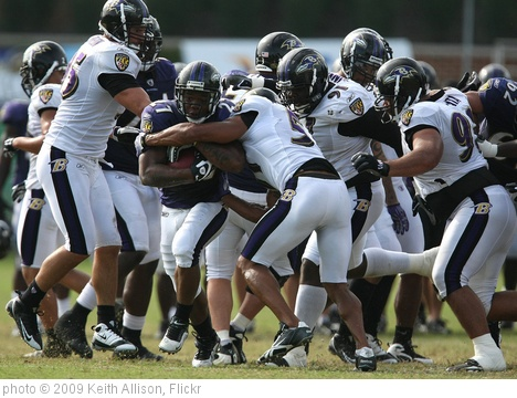 'Ray Rice' photo (c) 2009, Keith Allison - license: http://creativecommons.org/licenses/by-sa/2.0/