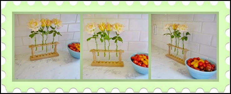 Ribbet collage Summer Flowers and tomatoes