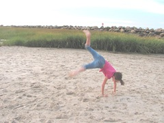 Corporation Beach sunset Lily cartwheels1...8.19
