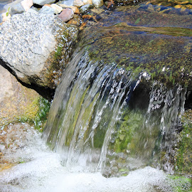 Falling Water by Chris Torrie - Nature Up Close Water ( water, waterfall, water fall )