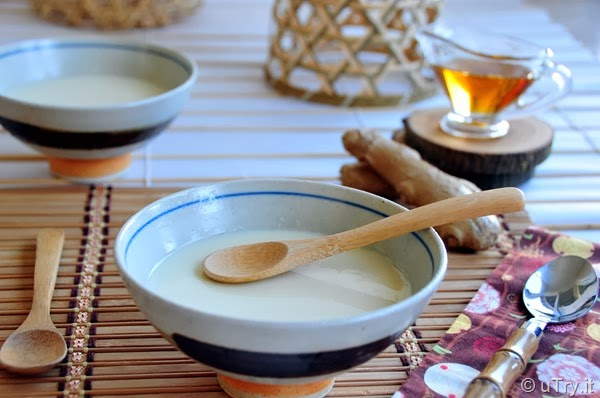 Homemade Tofu Pudding (To-Fu-Fa) with Ginger Syrup 自家製豆腐花