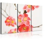 photogift-canvasprint-triptych-12x18$AU-NZ_default_default