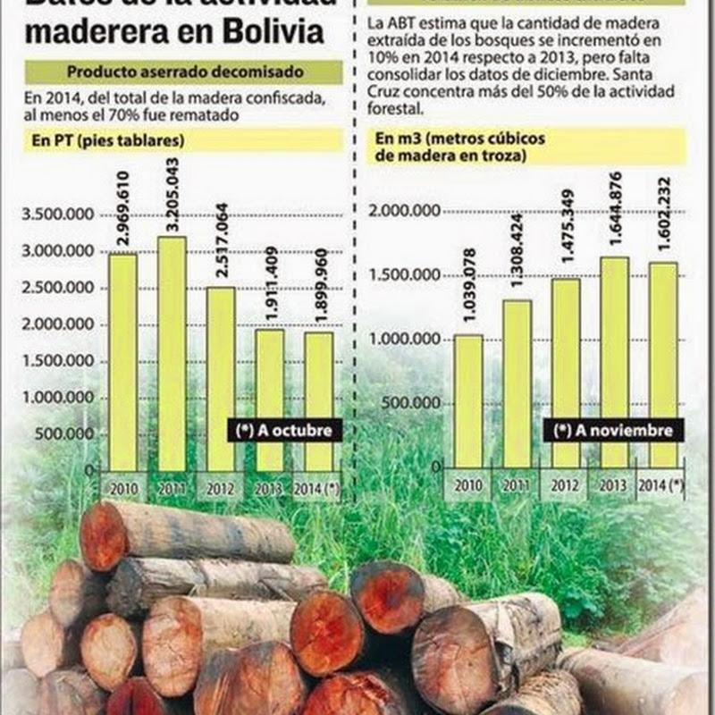 Crece la extracción de madera y mejora la provisión al mercado