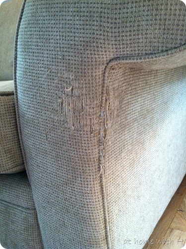 at home with H: Cat Scratch Fever (aka Sami-Proofing the Couch)
