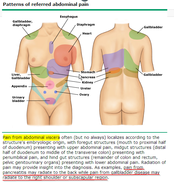 abdominal pain critique