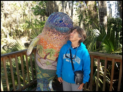 Manatee and Black Bear Trail 044