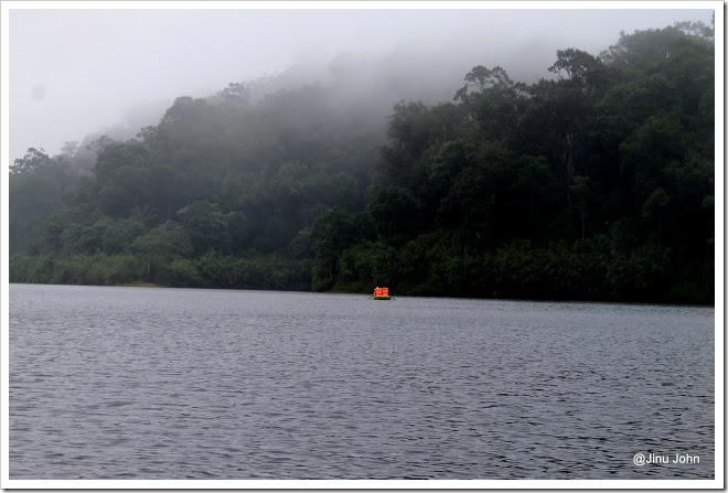 Gavi Lake Forest