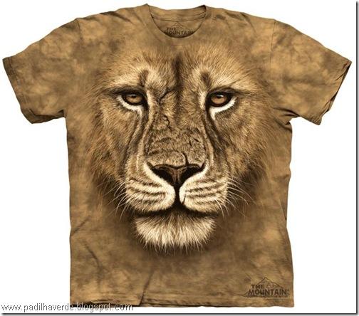 camisetas de Montain-11