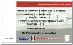 Fulham Yth stub
