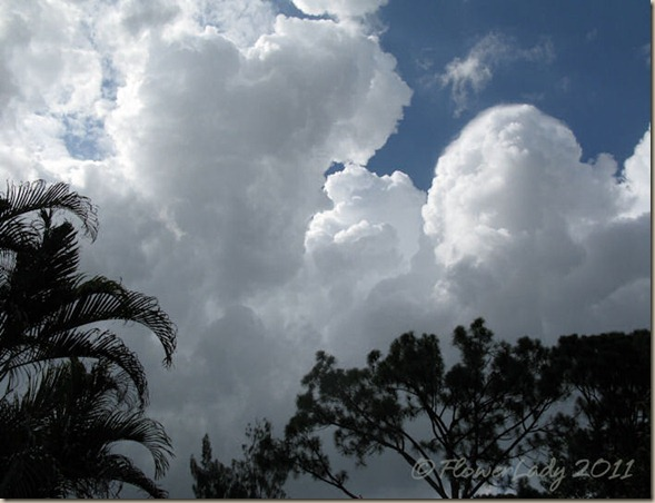 07-19-clouds