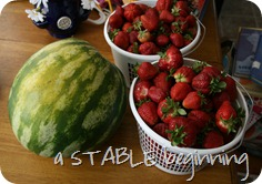 strawberries again 009