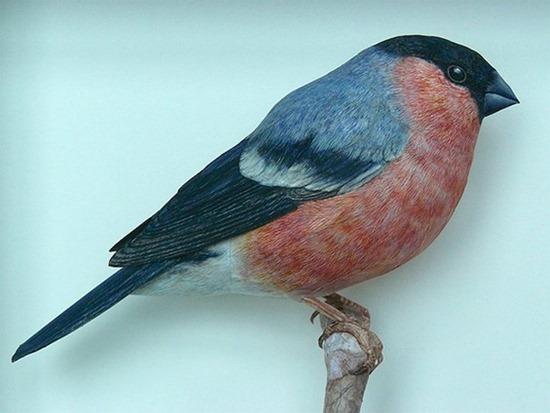 Pássaros_papel (3)