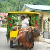 seychelles9_20070412_1830188855.jpg