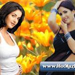 Sexy-Katrina-Kaif-Photos-4.jpg