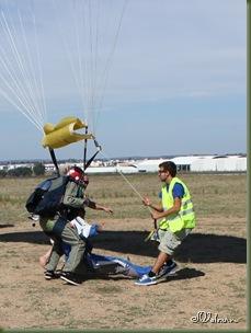 skydive 163