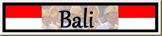 bali title slide