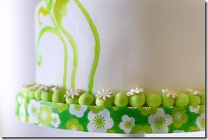 torta dipinta-4
