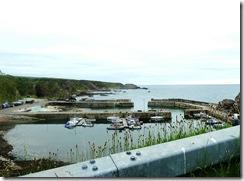 ptk harbour2