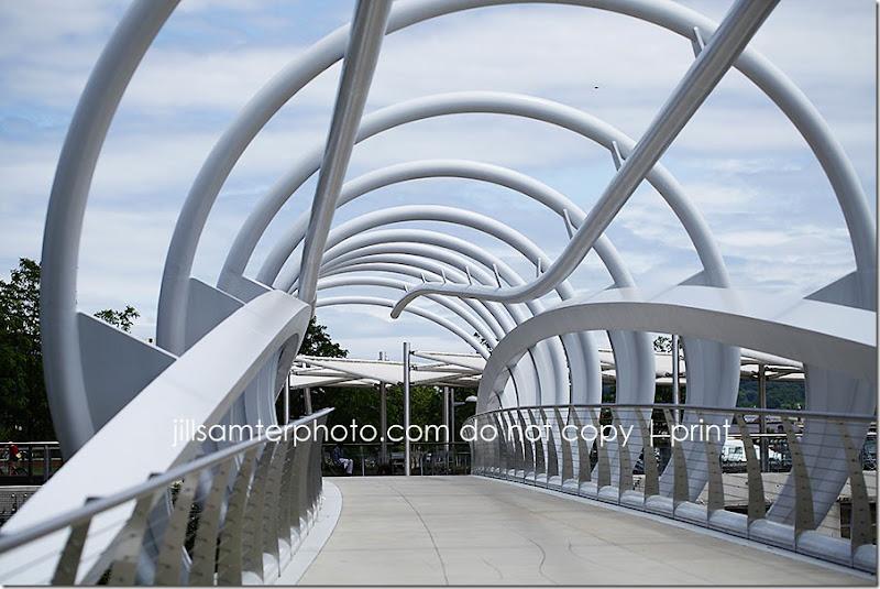bridge_8502
