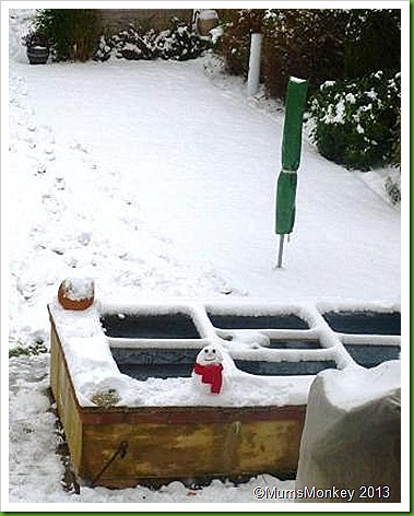 Snowman in the garden