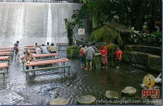 مطعم تحت الشلالات عالم ريفو 2