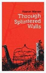 Kaaron-SpinteredWalls-011