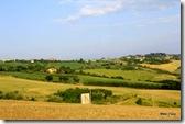 Paisagem entre Ancona e Urbino, com variados tons de verde. Durante todo o caminho imaginava como seria a paleta de cores para pintar um quadro desta região.