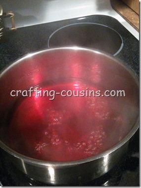 Dyeing Yarn (2)