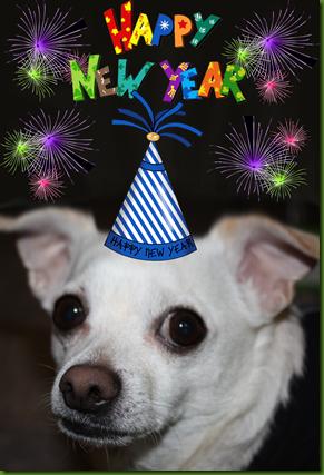 higgins-new-year