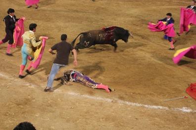 R. Miguel insconsciente en el suelo  copia