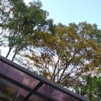 20131026_大濠公園