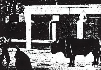 1910-05-02-El-Toreo-p.-el-3-Bienveni[2]
