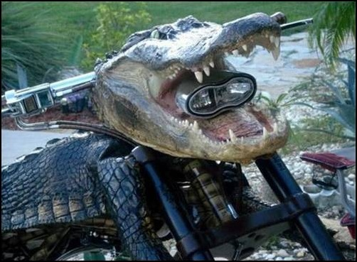 Alligator-Bike-croc_bike_02