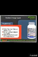 omega untuk kolestrol