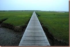 sandwichboardwalk1