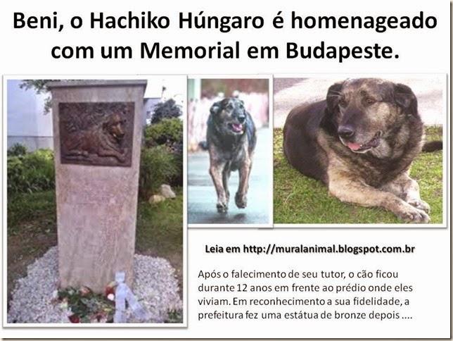 Beni o Hachiko Húngaro é homenageado com