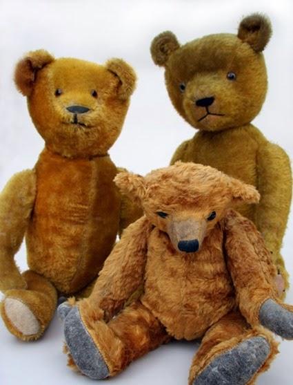teddy019