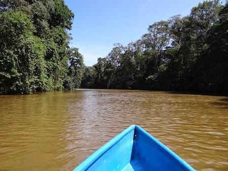 13. Prin canalele Tortuguero.JPG