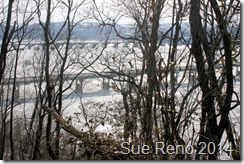 Ice on the Susquehanna River, 2/2014, by Sue Reno, Image 7