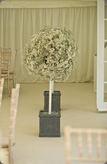 Image00006 spriggs florist