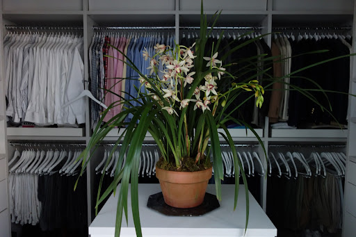 I carried the orchid theme throughout the house – there were in my dressing room.
