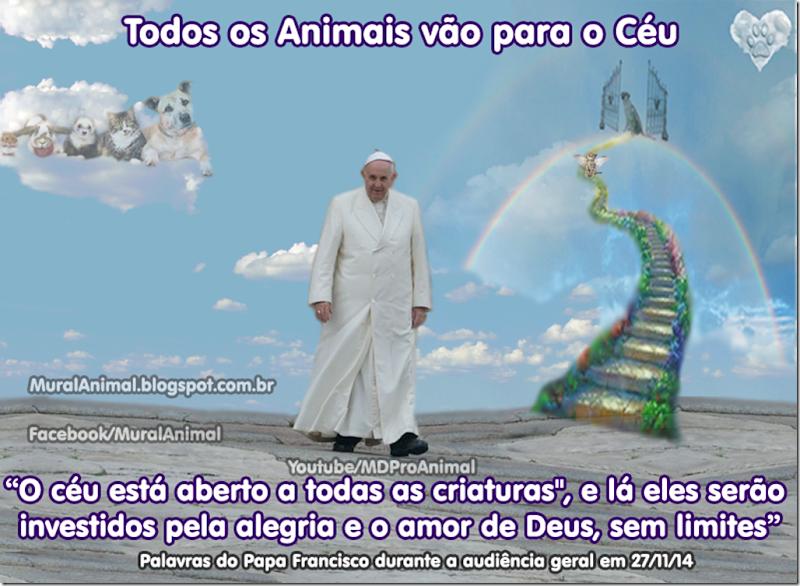 papa_ceu_animais