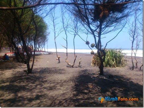 Pantai Baru Bantul Kisah Foto_02
