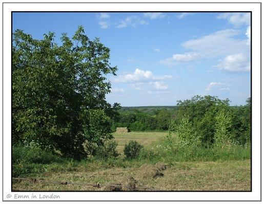 Novi Sad countryside