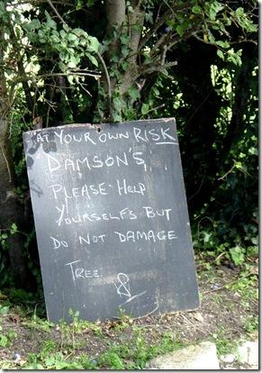Damson Notice