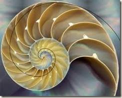 Fibonacci01
